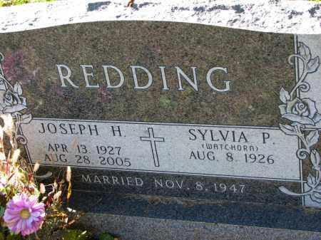 REDDING, JOSEPH H. - Yankton County, South Dakota | JOSEPH H. REDDING - South Dakota Gravestone Photos
