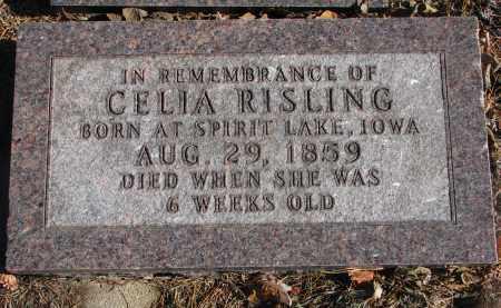 RISLING, CELIA - Yankton County, South Dakota | CELIA RISLING - South Dakota Gravestone Photos