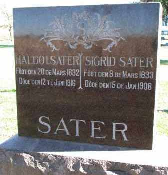 SATER, HALDO L. - Yankton County, South Dakota | HALDO L. SATER - South Dakota Gravestone Photos