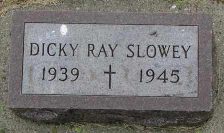 SLOWEY, DICKY RAY - Yankton County, South Dakota | DICKY RAY SLOWEY - South Dakota Gravestone Photos