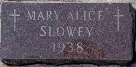 SLOWEY, MARY ALICE - Yankton County, South Dakota | MARY ALICE SLOWEY - South Dakota Gravestone Photos