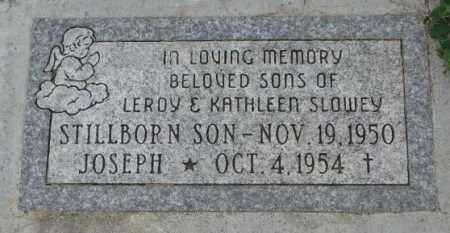 SLOWEY, SON - Yankton County, South Dakota | SON SLOWEY - South Dakota Gravestone Photos