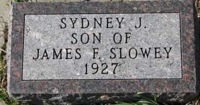 SLOWEY, SYDNEY J. - Yankton County, South Dakota | SYDNEY J. SLOWEY - South Dakota Gravestone Photos