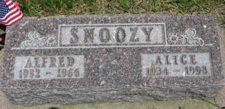 SNOOZY, ALFRED - Yankton County, South Dakota | ALFRED SNOOZY - South Dakota Gravestone Photos