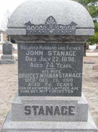 STANAGE, BRIDGET - Yankton County, South Dakota | BRIDGET STANAGE - South Dakota Gravestone Photos