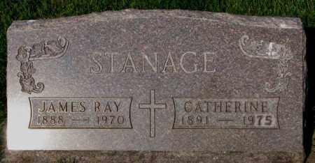 STANAGE, JAMES RAY - Yankton County, South Dakota   JAMES RAY STANAGE - South Dakota Gravestone Photos