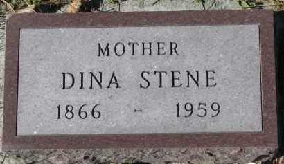 STENE, DINA - Yankton County, South Dakota | DINA STENE - South Dakota Gravestone Photos