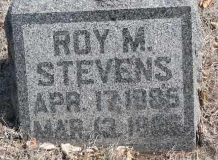 STEVENS, ROY M. - Yankton County, South Dakota | ROY M. STEVENS - South Dakota Gravestone Photos
