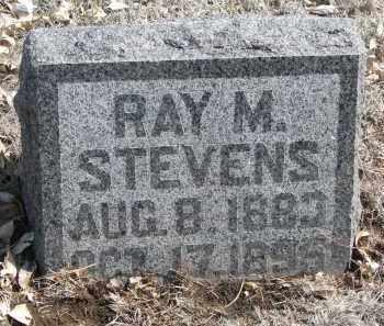 STEVENS, RAY M. - Yankton County, South Dakota | RAY M. STEVENS - South Dakota Gravestone Photos