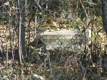 *STONE IN BRUSH, . - Yankton County, South Dakota | . *STONE IN BRUSH - South Dakota Gravestone Photos