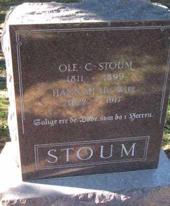 STOUM, HANNAH - Yankton County, South Dakota | HANNAH STOUM - South Dakota Gravestone Photos