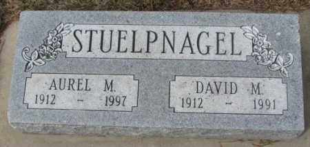 STUELPNAGEL, DAVID M. - Yankton County, South Dakota | DAVID M. STUELPNAGEL - South Dakota Gravestone Photos