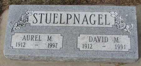 STUELPNAGEL, DAVID M. - Yankton County, South Dakota | DAVID M. STUELPNAGEL - South Dakota Gravestone Photos
