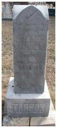 TARBOX, NOAH C. - Yankton County, South Dakota   NOAH C. TARBOX - South Dakota Gravestone Photos