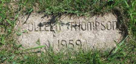 THOMPSON, COLLEEN - Yankton County, South Dakota | COLLEEN THOMPSON - South Dakota Gravestone Photos