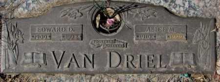 VAN DRIEL, ALICE M. - Yankton County, South Dakota | ALICE M. VAN DRIEL - South Dakota Gravestone Photos