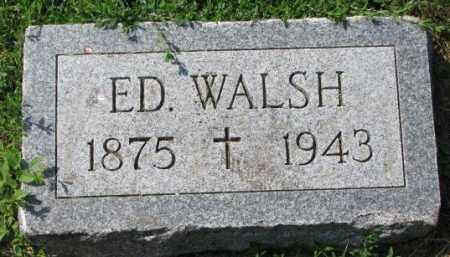 WALSH, ED. - Yankton County, South Dakota | ED. WALSH - South Dakota Gravestone Photos