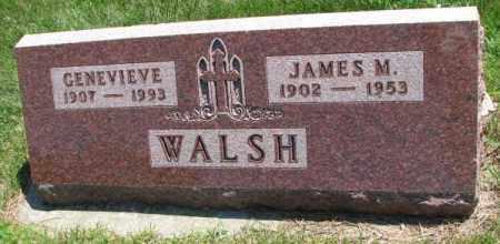 WALSH, GENEVIEVE - Yankton County, South Dakota | GENEVIEVE WALSH - South Dakota Gravestone Photos