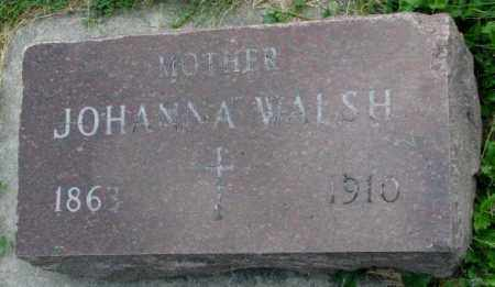 WALSH, JOHANNA - Yankton County, South Dakota | JOHANNA WALSH - South Dakota Gravestone Photos