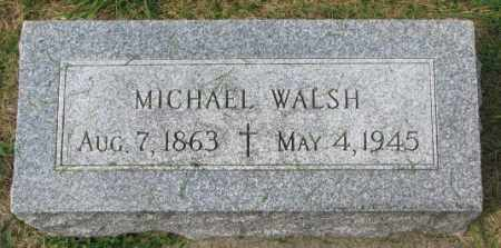 WALSH, MICHAEL - Yankton County, South Dakota | MICHAEL WALSH - South Dakota Gravestone Photos