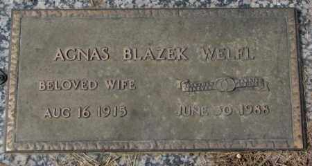 BLAZEK WELFL, AGNES - Yankton County, South Dakota | AGNES BLAZEK WELFL - South Dakota Gravestone Photos