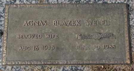 BLAZEK WELFL, AGNES - Yankton County, South Dakota   AGNES BLAZEK WELFL - South Dakota Gravestone Photos