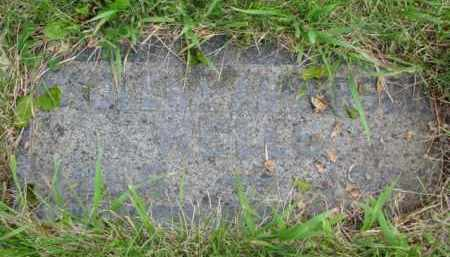 WELLS, PAULENA - Yankton County, South Dakota | PAULENA WELLS - South Dakota Gravestone Photos