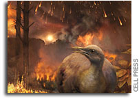 When Dinosaurs Died So Did Forests And Tree-dwelling Birds