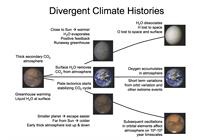 The Inner Solar System's Habitability Through Time