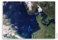 Earth from Space: North Sea Algae Bloom