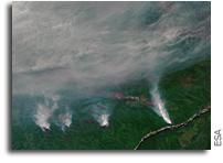Siberian Wildfires Seen From Orbit