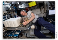 NASA Space Station On-Orbit Status 10 July 2019 - Safety Gear Checks and Lab Maintenance