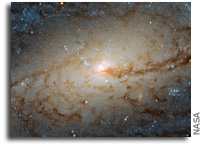 Hubble Examines Barred Spiral Galaxy NGC 3887