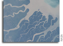The Southern Coast Of Bangladesh As Viewed From Orbit