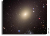 The Habitability of Large Elliptical Galaxies