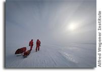 An Active Arctic: Where Sea Ice Meets the Midnight Sun