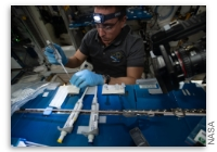NASA Space Station On-Orbit Status 10 August, 2020 - Space Physics and Biotechnology Research