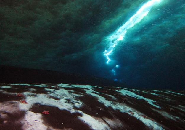 ScienceAlert: First Methane Leak Found on Antarctic Sea Floor Confirms Researchers' Fears