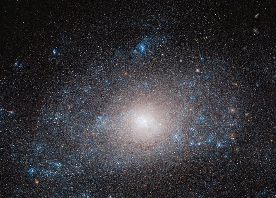 Hubble Views Galaxy NGC 5585