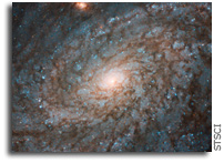 Hubble Gazes at Fluffy-Looking Galaxy