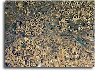 Orbital View Of Canadian Crop Art