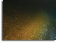 深层和极端:微生物在过渡中茁壮成长