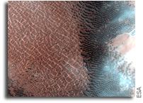 Dynamic Dunes On Mars