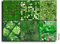 Climate Change and Its Environmental Impacts on Crop Growth