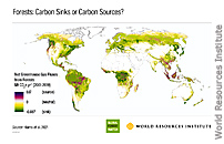 NASA Satellites Help Quantify Forests' Impacts on Global Carbon Budget