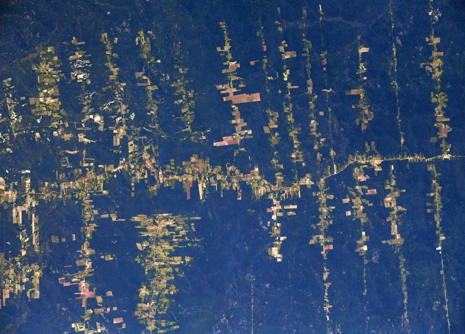 Orbital View Of Deforestation In The Amazon