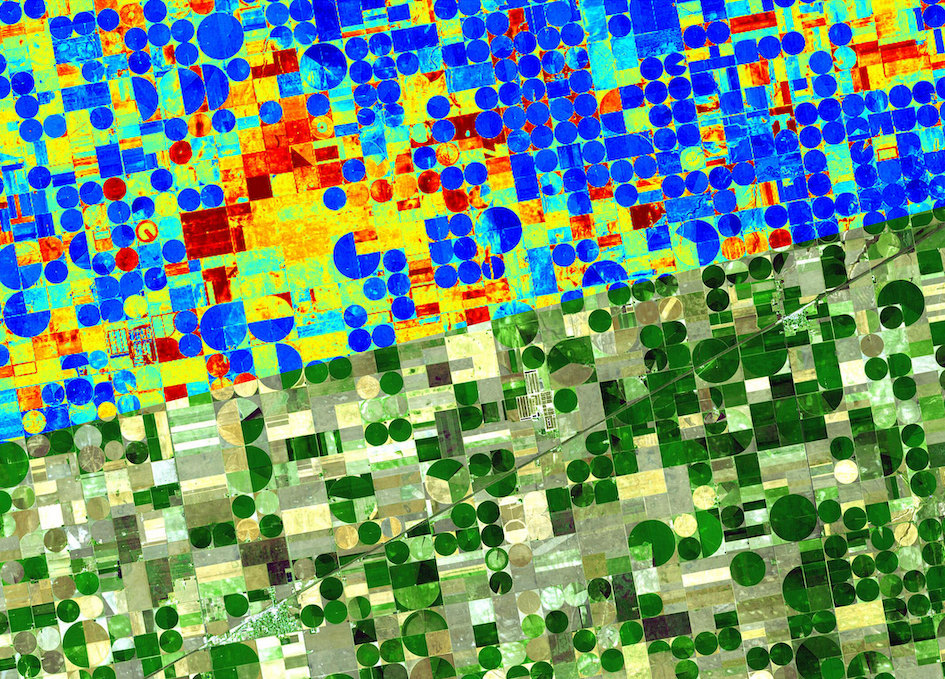 ConstellR And ScanWorld Sign Partnership For High-value Agriculture Data