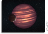 Prospects for Life on Temperate Planets Around Brown Dwarfs