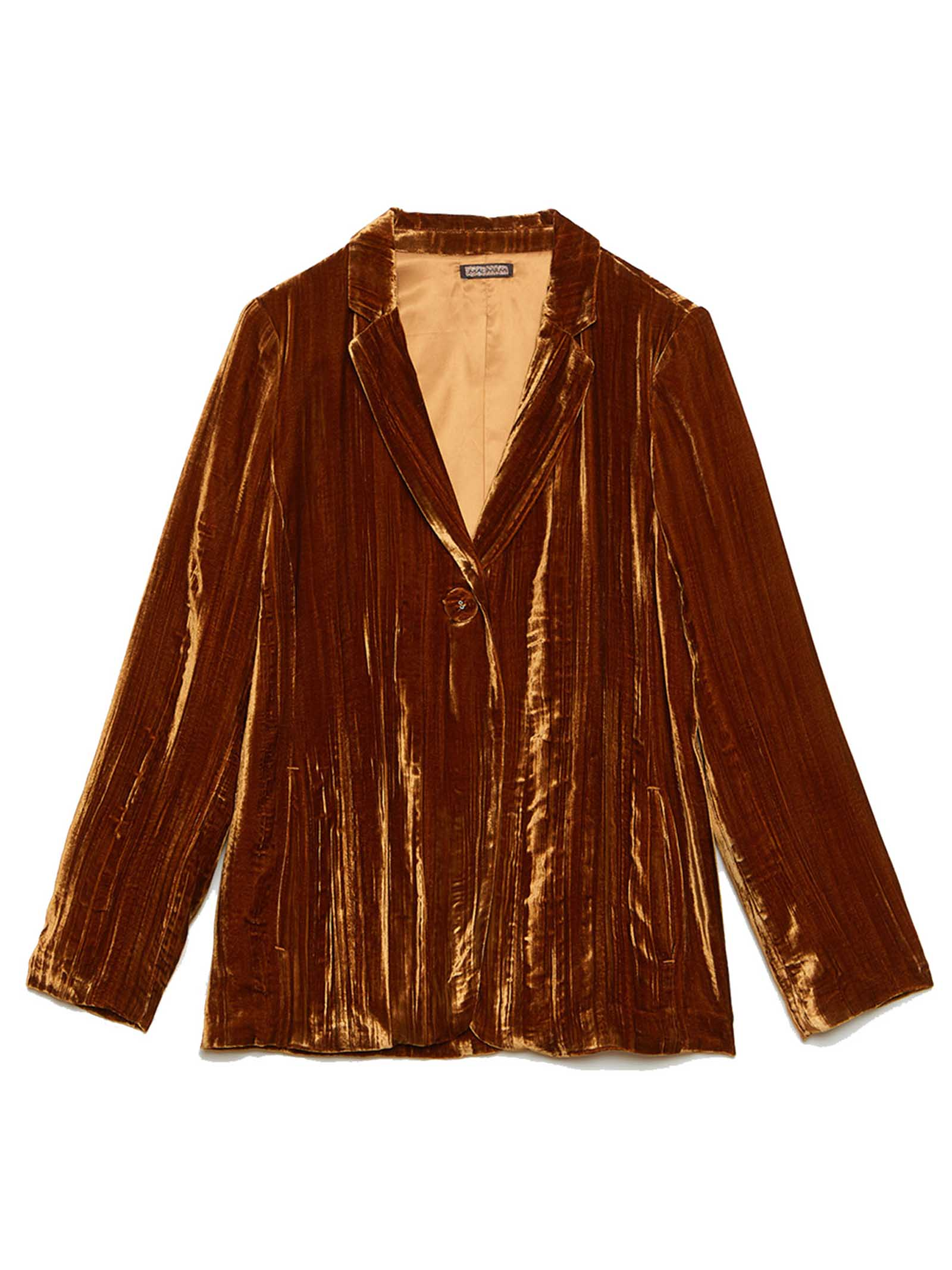 Women's Crinkle Single-breasted Jacket in Velvet and Silk Biscuit  Maliparmi | Jackets | JD62626102941004