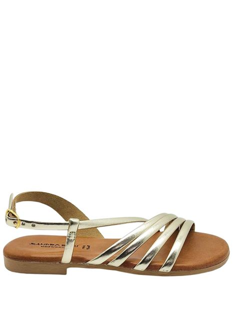 Women's Shoes Flat Sandals in Platinum Leather Ankle Strap and Rubber Bottom Sandro Rosi |  | 3293600